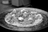46/365 - testing new 85mm lens on fresh mozzarella/frozen pizza.